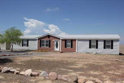 Avondale Single Family Home For Sale: 3225 36th Lane