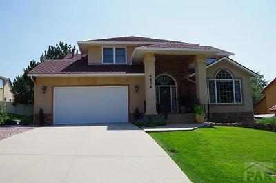 Pueblo Single Family Home For Sale: 4806 Indigo Court