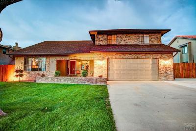 Pueblo Single Family Home For Sale: 198 Encino Dr
