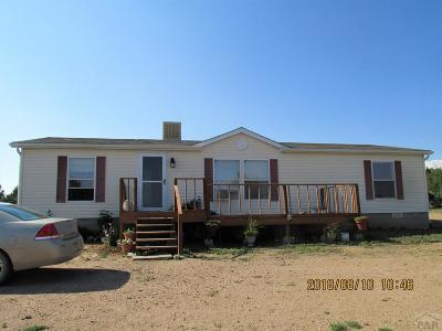 Pueblo Single Family Home For Sale: 3010 Canyon Heights Rd