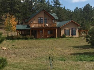 Westcliffe Single Family Home For Sale: 1235 Schulze Ranch Rd