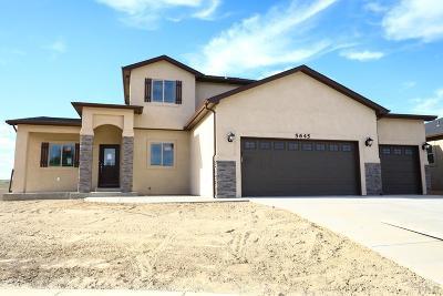 Pueblo Single Family Home For Sale: 5645 Terracina Pl