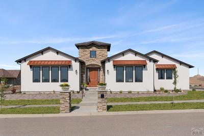 Pueblo Single Family Home For Sale: 4705 Mica St
