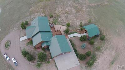 Westcliffe Single Family Home For Sale: 501 County Road 324