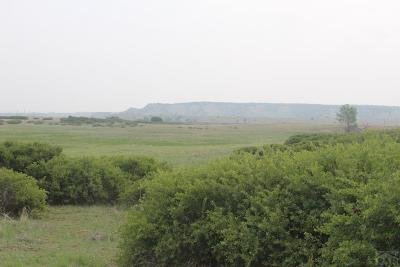 Rye Residential Lots & Land For Sale: L0t 71 E Lascar Rd