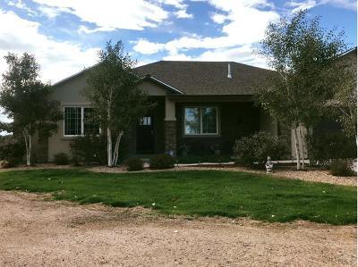 Pueblo Single Family Home For Sale: 1267 27th Lane