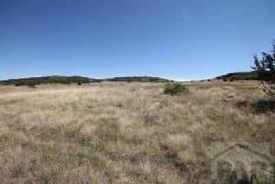 Colorado City Residential Lots & Land For Sale: Tbd Antoinette Lane