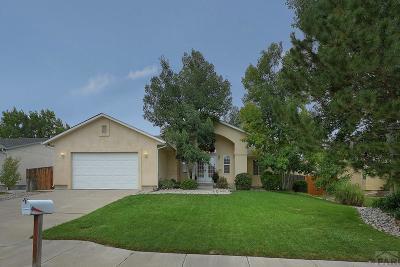 Pueblo Single Family Home For Sale: 5 Malibu Court