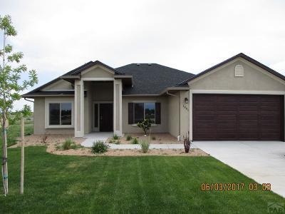 Pueblo West Single Family Home For Sale: 1003 Acreview Dr