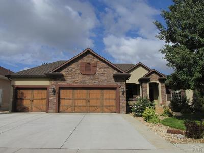 Pueblo Single Family Home For Sale: 4711 Desert Candle Dr