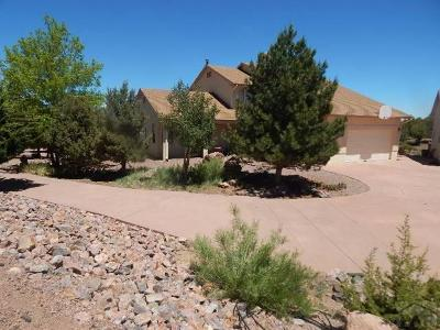 Canon City Single Family Home For Sale: 94 S Eagle Dr