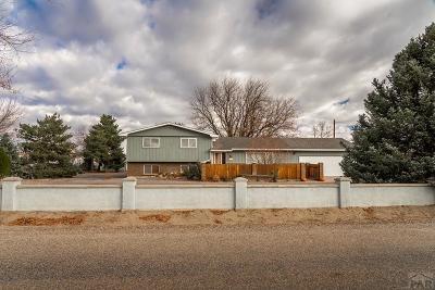 Pueblo Single Family Home For Sale: 28079 Iris Rd