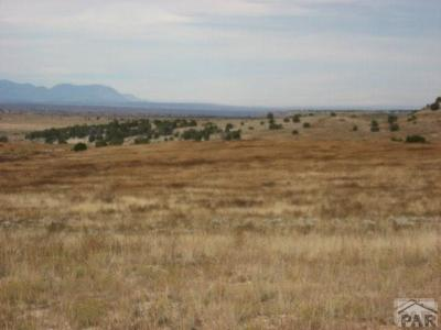 Colorado City Residential Lots & Land For Sale: 21 Mallory Dr