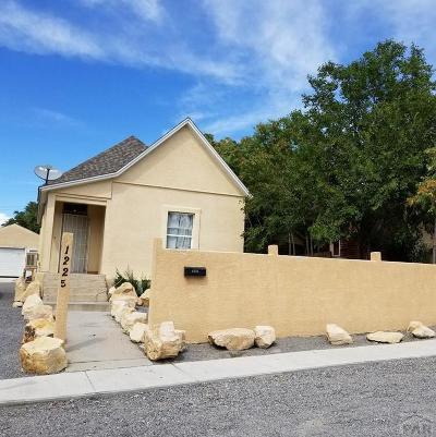 Pueblo Single Family Home For Sale: 1225 E 9th St