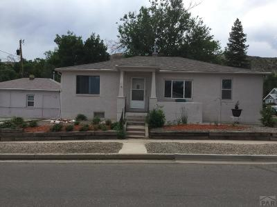 Canon City Single Family Home For Sale: 626 Mystic