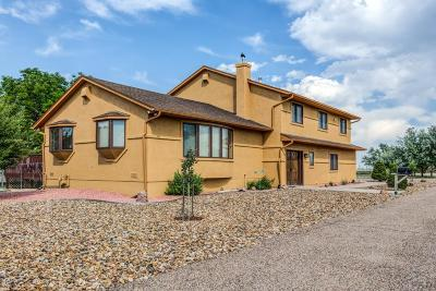 Pueblo West Single Family Home For Sale: 54 N Clintwood Dr