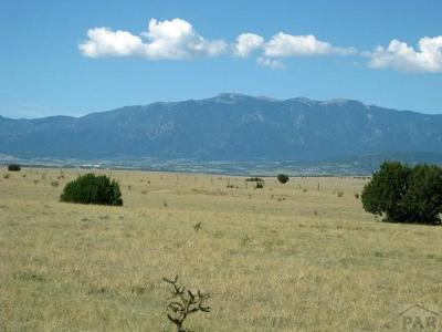 Pueblo Residential Lots & Land For Sale: Par 125 Sunflower Lane