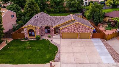 Pueblo Single Family Home For Sale: 40 Posada Dr