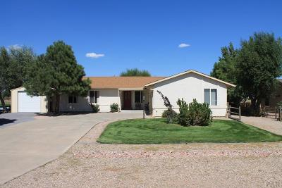 Colorado City Single Family Home For Sale: 4705 Cuerno Verde Blvd