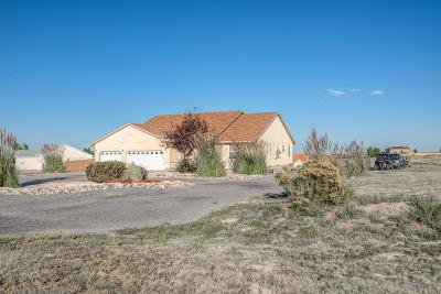 Pueblo Single Family Home For Sale: 1072 S Purcell Blvd