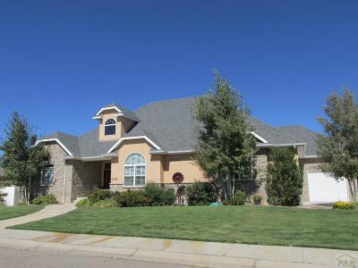 Pueblo Single Family Home For Sale: 909 Senecio Dr