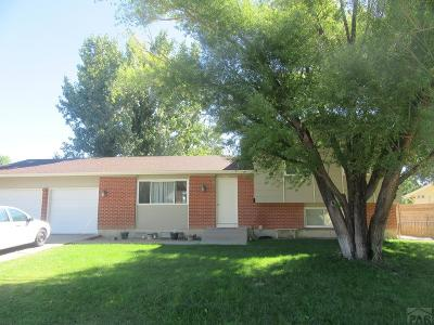 Pueblo Single Family Home For Sale: 4010 North Dr