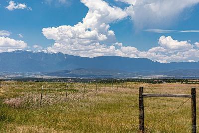 Colorado City Residential Lots & Land For Sale: Tbd Amanda Lane