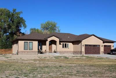 Pueblo Single Family Home For Sale: 987 23rd Lane