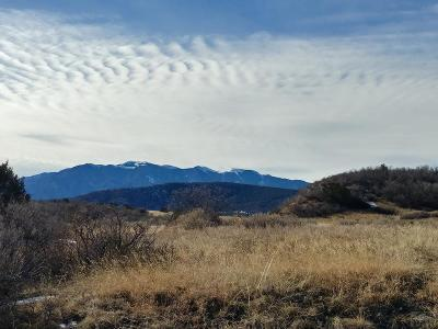 Colorado City Residential Lots & Land For Sale: Tbd Aspen Dr