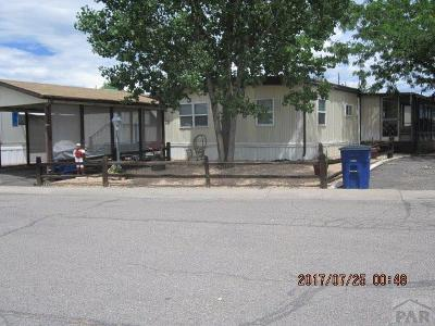 Canon City Single Family Home For Sale: 888 N Orchard Ave #14