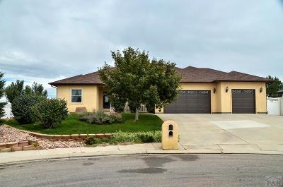 Pueblo Single Family Home For Sale: 10 Erica Court