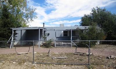 Pueblo West Single Family Home For Sale: 980 S Saki Dr