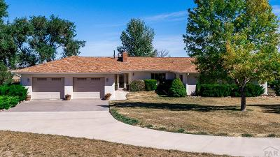 Beulah Single Family Home For Sale: 7796 Hwy 78