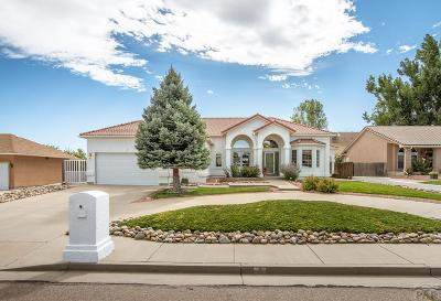 Pueblo Single Family Home For Sale: 194 Bridle Trail