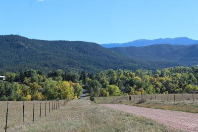Beulah Residential Lots & Land For Sale: Tbd North Creek Cut-Off