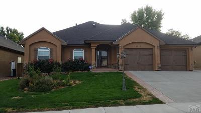 Pueblo Single Family Home For Sale: 1510 Lynn Meadows