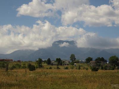 Colorado City Residential Lots & Land For Sale: 4756 Cuerno Verde Blvd