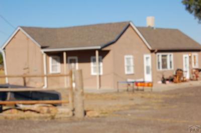 Pueblo Single Family Home For Sale: 1040 27th Lane