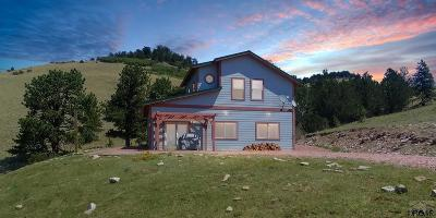 Canon City Single Family Home For Sale: 7029 Autumn Creek Dr