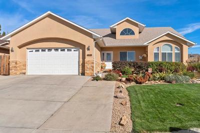 Pueblo Single Family Home For Sale: 4916 Flicker Dr
