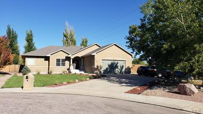 Pueblo Single Family Home For Sale: 4680 Harrier Court