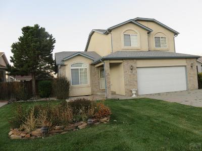 Pueblo Single Family Home For Sale: 7 Avon Court