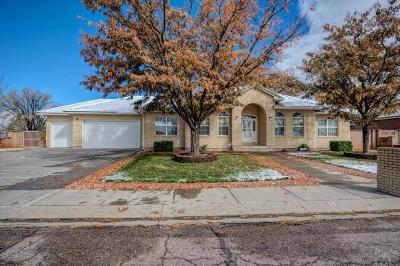Pueblo Single Family Home For Sale: 146 Alhambra Dr