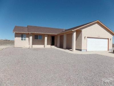 Pueblo West Single Family Home For Sale: 1361 N Dailey