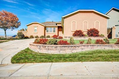 Pueblo Single Family Home For Sale: 5133 Lynn Meadows Dr