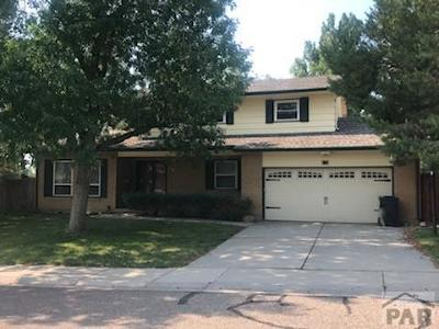 Pueblo Single Family Home For Sale: 14 Hadley Rill