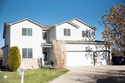 Pueblo Single Family Home For Sale: 10 Slayton Court