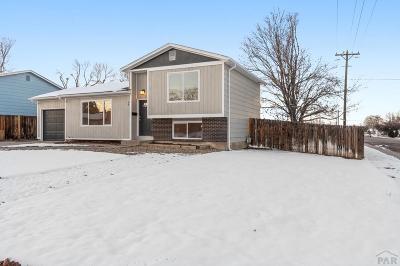 Pueblo Single Family Home For Sale: 89 Bridle Trail