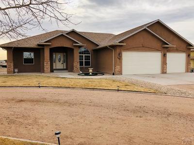 Pueblo West Single Family Home For Sale: 1140 S Hollister Dr