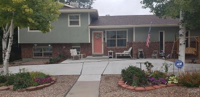 Pueblo Single Family Home For Sale: 1123 Candytuft Blvd
